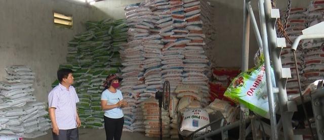 thai nguyen phan dau gieo cay 39500 ha lua vu mua