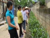 thai nguyen tich cuc trien khai mo hinh gia dinh 5 khong 3 sach