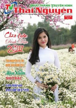 Tạp chí tết 2017