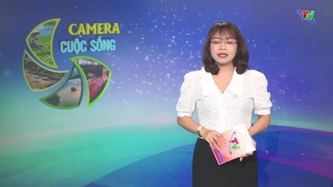 Bản tin Camera cuộc sống ngày 27/7/2021