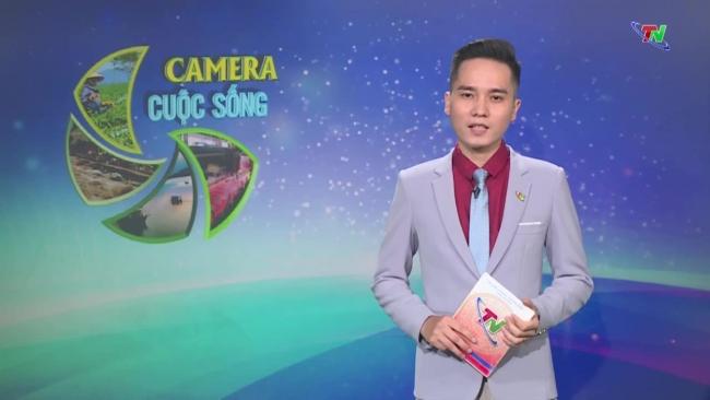 Bản tin Camera cuộc sống ngày 31/7/2021