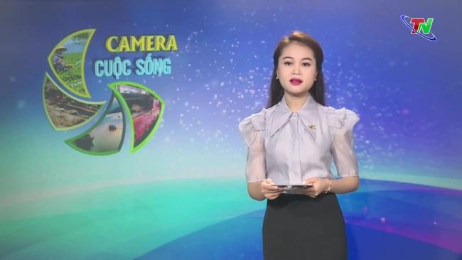 Bản tin Camera cuộc sống ngày 21/10/2021