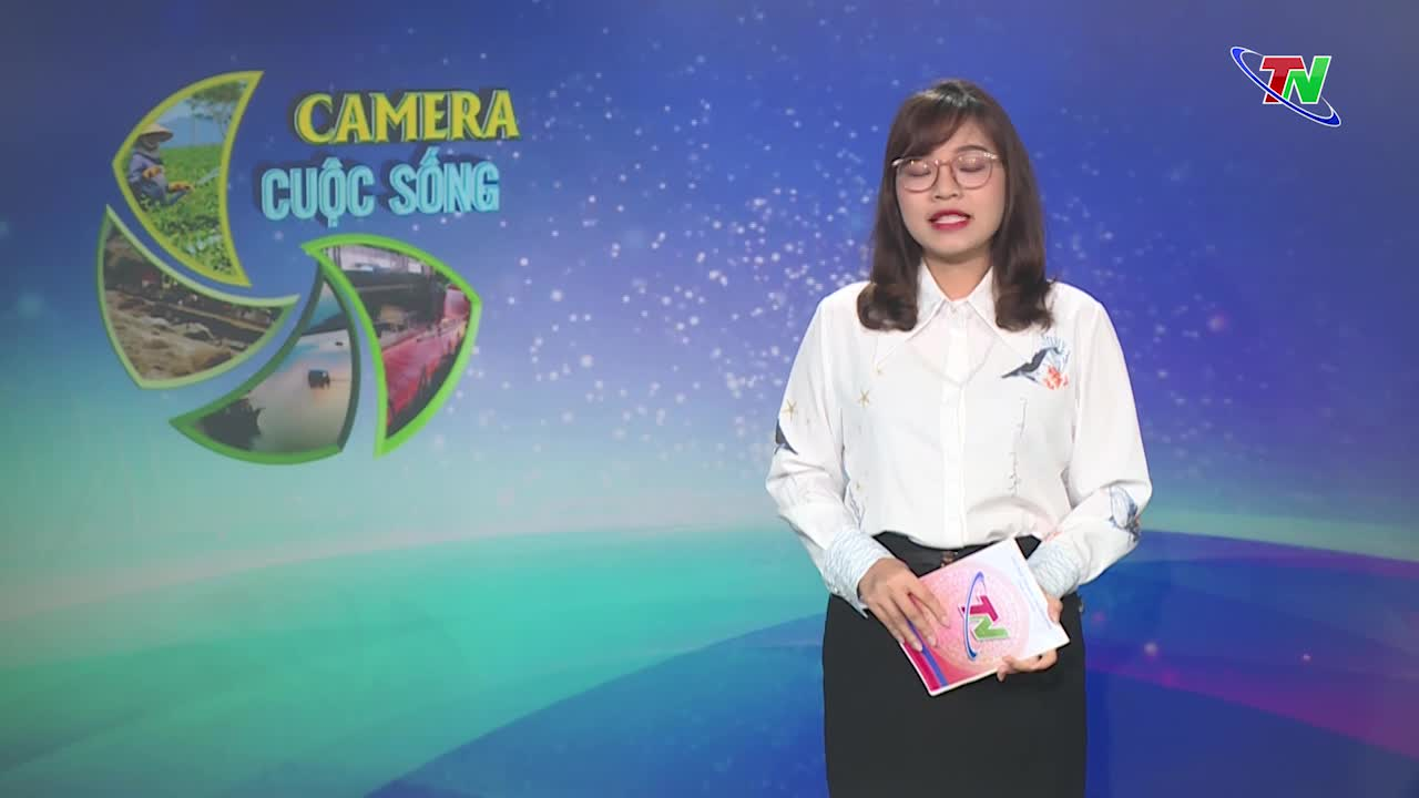 Bản tin Camera cuộc sống ngày 19/10/2021