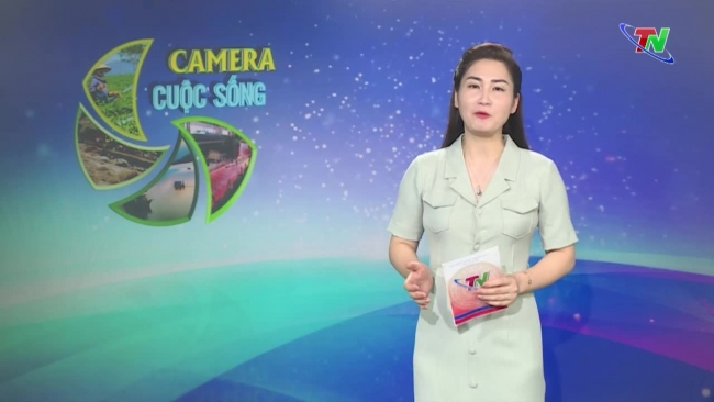 Bản tin Camera cuộc sống ngày 23/7/2021