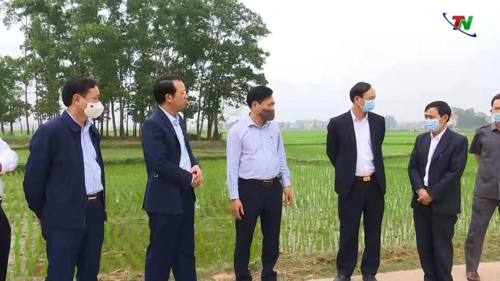 Triển vọng từ Khu nông nghiệp ứng dụng công nghệ cao