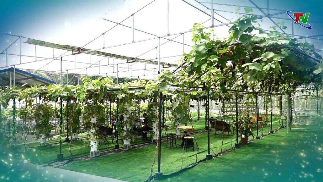 Mô hình du lịch sinh thái kết hợp phát triển nông nghiệp