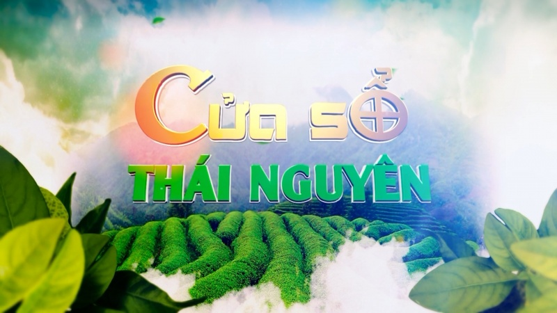 Chuyên mục Cửa sổ Thái Nguyên ngày 4/7/2020