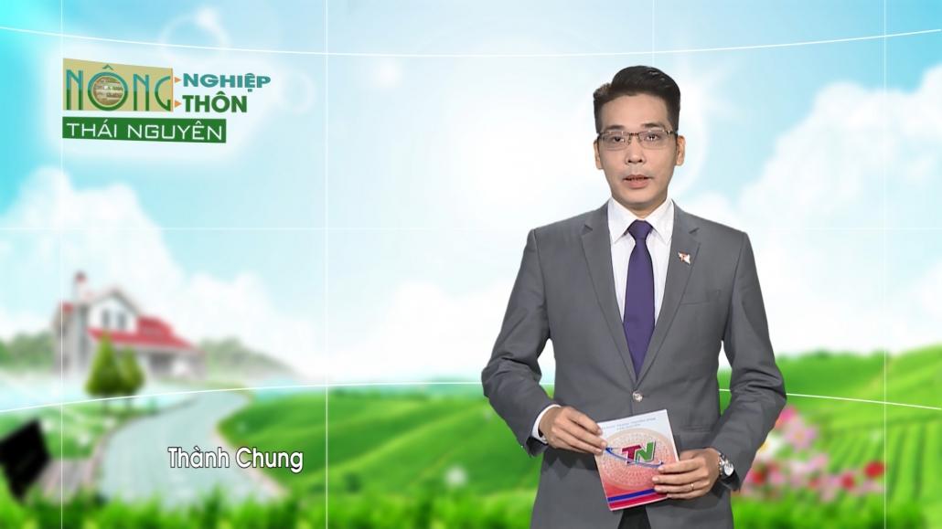 Chuyên mục Nông nghiệp nông thôn ngày 20/01/2021