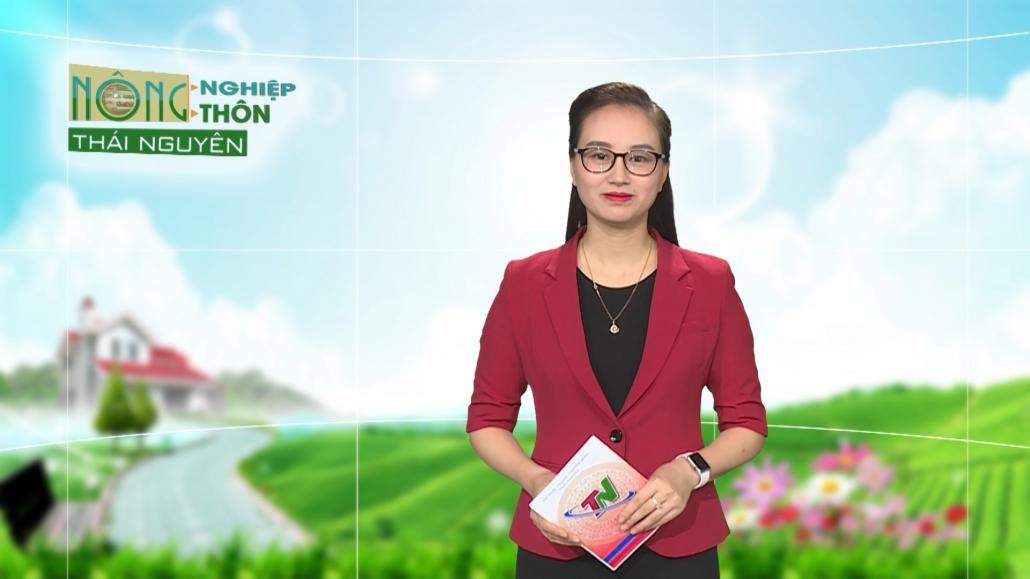Chuyên mục Nông nghiệp nông thôn ngày 27/01/2021