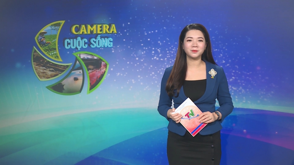 Camera cuộc sống ngày 31/3/2021