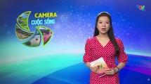 Camera cuộc sống ngày 21/4/2020