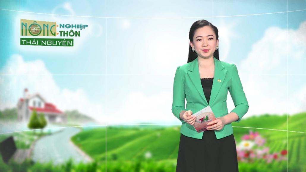 Nông nghiệp nông thôn ngày 07/4/2021