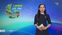 Bản tin Camera cuộc sống ngày 8/8/2020