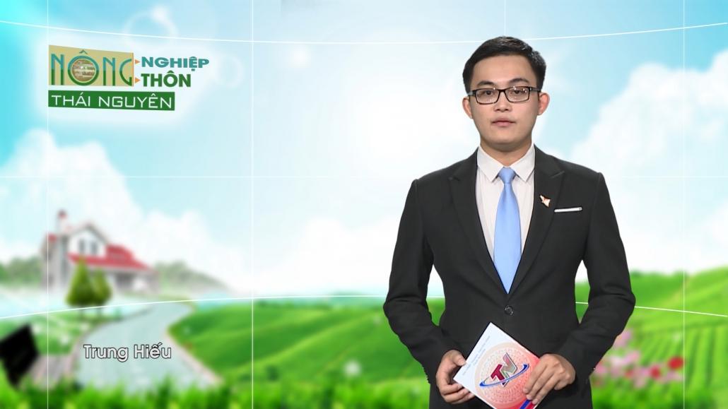 Chuyên mục Nông nghiệp nông thôn ngày 11/11/2020