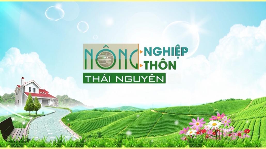 Nông nghiệp nông thôn Thái Nguyên ngày 13/1/2021