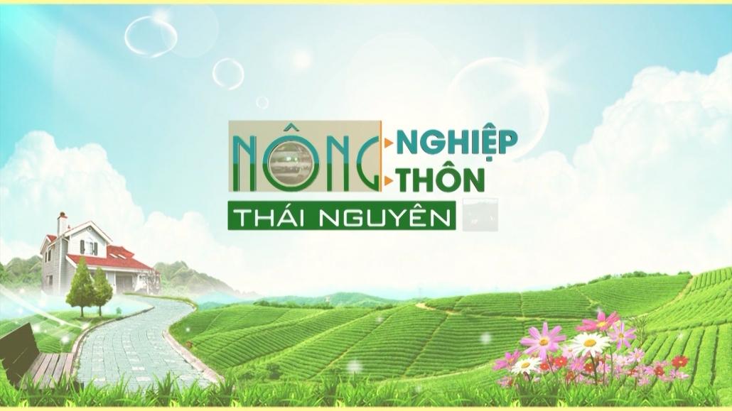Nông nghiệp nông thôn Thái Nguyên ngày 3/3/2021