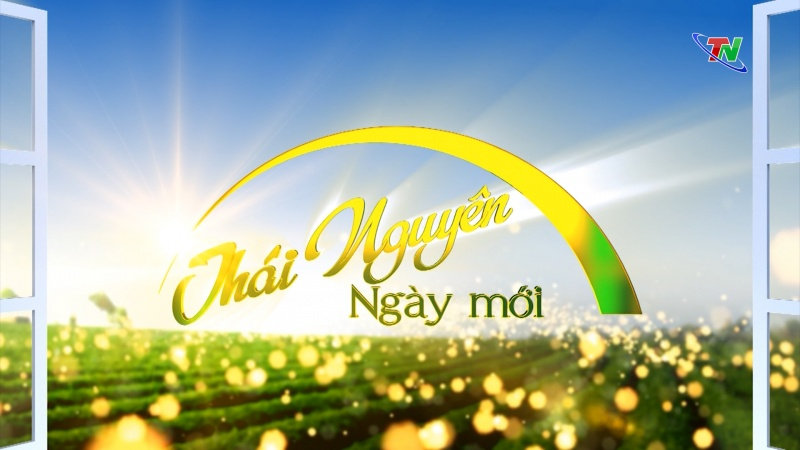 Thái Nguyên ngày mới 1/6/2020