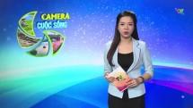 Bản tin Camera cuộc sống ngày 5/4/2020