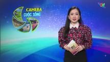Bản tin Camera cuộc sống ngày 25/4/2020